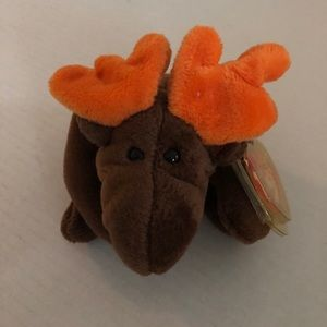 Ty Beanie Babies Chocolate the Moose Style 4015